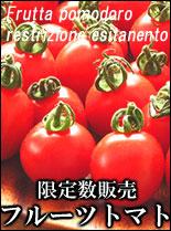 フルーツトマトの生パスタ ピザ 通販 お取り寄せ
