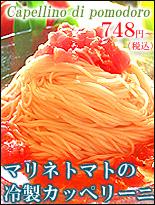 冷製パスタ マリネトマトのカッペリーニ 通販 お取り寄せ